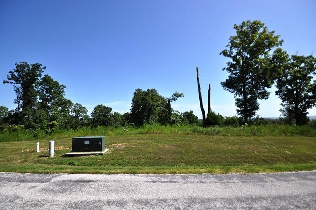 Lt 361 Emory Creek Boulevard, Branson, MO 65616 (MLS #60059735) :: Winans - Lee Team | Keller Williams Tri-Lakes