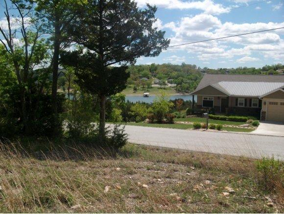 Lot 1 Ozark Hollow, Blue Eye, MO 65611 (MLS #60060016) :: Good Life Realty of Missouri
