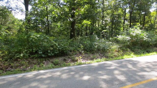 Lot 4 Mccord Bend Road, Galena, MO 65656 (MLS #60061200) :: Team Real Estate - Springfield