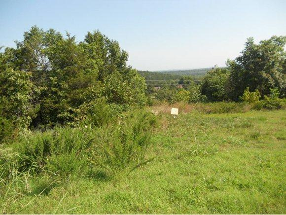 000 Pine Woods Village Drive, Hollister, MO 65672 (MLS #60073485) :: Sue Carter Real Estate Group