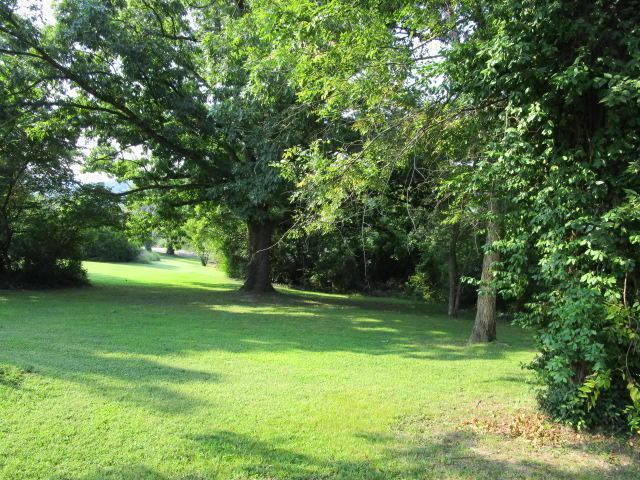 514 Ellison Avenue, Branson, MO 65616 (MLS #60079418) :: Good Life Realty of Missouri
