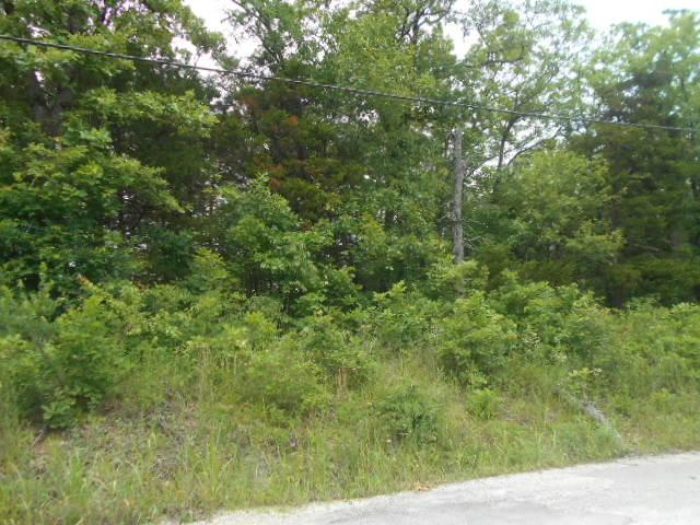 Tbd Stone Road, Merriam Woods, MO 65740 (MLS #60080133) :: Sue Carter Real Estate Group