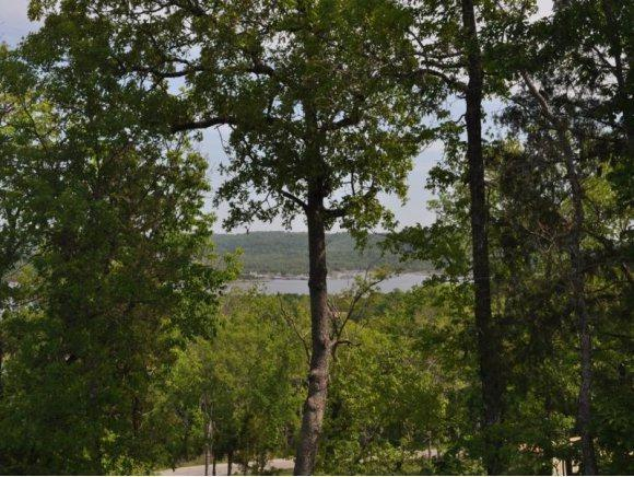 Lot 20b Whitefish Bay, Lampe, MO 65681 (MLS #60087430) :: United Country Real Estate