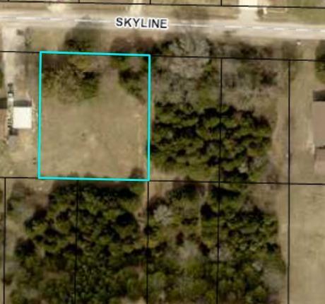 138 Skyline Drive, Forsyth, MO 65653 (MLS #60088867) :: Team Real Estate - Springfield