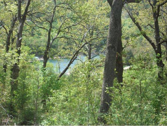 Tbd Treasure Hunt Trail, Blue Eye, MO 65611 (MLS #60091800) :: Greater Springfield, REALTORS