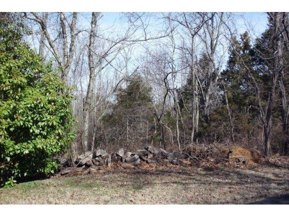 Lot 13 James View Road, Kimberling City, MO 65686 (MLS #60091898) :: Tucker Real Estate Group | EXP Realty
