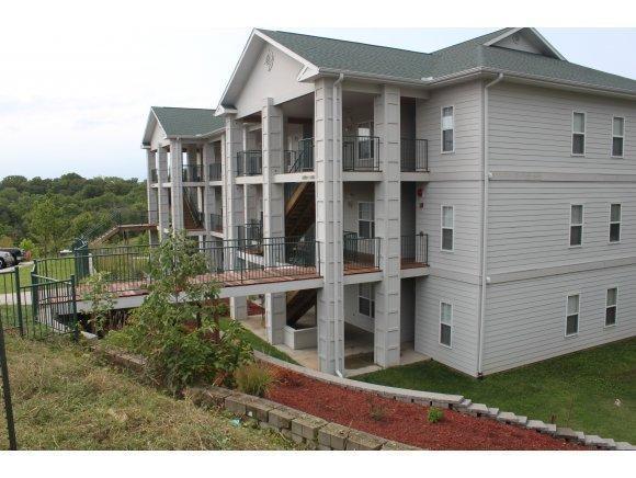 114 Oxford Drive 1-12, Branson, MO 65616 (MLS #60098473) :: Sue Carter Real Estate Group