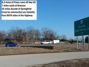 330 Hamilton Dr. Off Us Hwy 65 N, Walnut Shade, MO 65771 (MLS #60102759) :: Team Real Estate - Springfield
