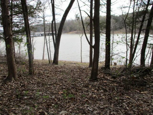 Lot 6 Foggy Cedar Cove, Shell Knob, MO 65747 (MLS #60105752) :: Team Real Estate - Springfield