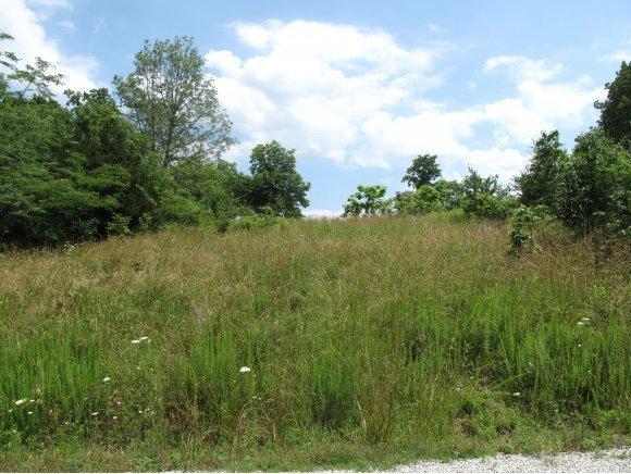 18 Green Cottage Drive, Shell Knob, MO 65747 (MLS #60105853) :: Greater Springfield, REALTORS