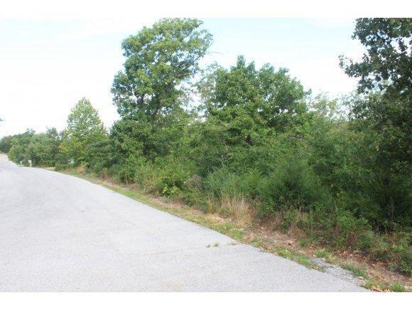 Lot 8 Rainbow Hill Lane, Reeds Spring, MO 65737 (MLS #60106749) :: Greater Springfield, REALTORS