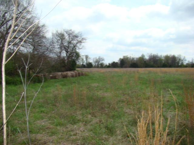 Tbd E Brodie Road, Goodman, MO 64843 (MLS #60108069) :: Greater Springfield, REALTORS