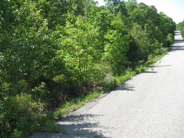 Tbd Ginger Drive, West Plains, MO 65775 (MLS #60108661) :: Greater Springfield, REALTORS