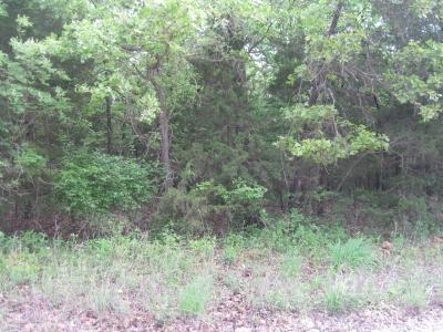 0 County Road 205L, Galmey, MO 65779 (MLS #60108893) :: Team Real Estate - Springfield
