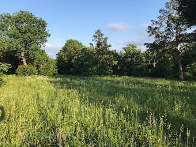 505 Corewood Lane Lot 11A, Reeds Spring, MO 65737 (MLS #60109354) :: Sue Carter Real Estate Group