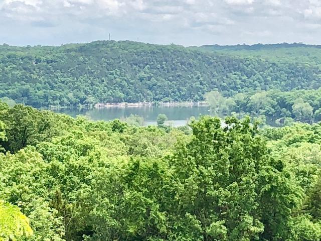 510 Chisholm Trail, Forsyth, MO 65653 (MLS #60109631) :: Good Life Realty of Missouri