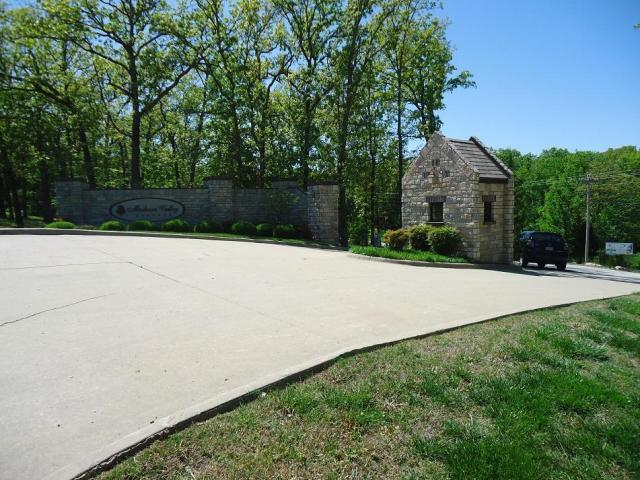 Tbd Madison Valley Lane, Kirbyville, MO 65679 (MLS #60109927) :: Sue Carter Real Estate Group