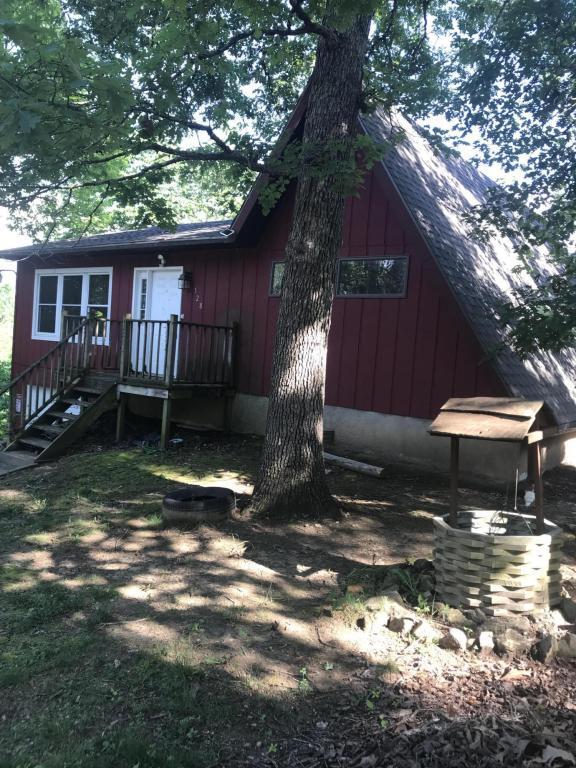 128 Apple Lane, Forsyth, MO 65653 (MLS #60112038) :: Good Life Realty of Missouri