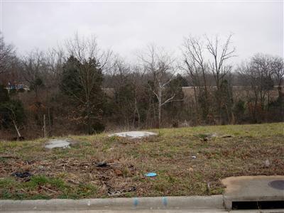 Lot 10 S Ridge Top Avenue, Springfield, MO 65804 (MLS #60114927) :: Sue Carter Real Estate Group