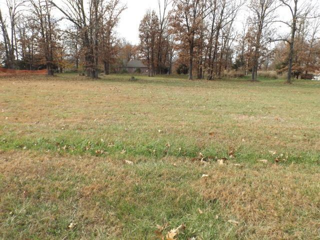 Lot 44 N Vermillion Drive, Strafford, MO 65757 (MLS #60115173) :: Sue Carter Real Estate Group