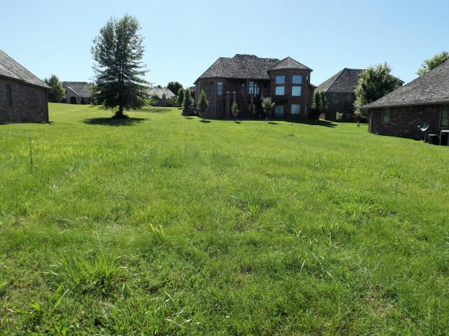 Lot 17 Rolling Hills 11th Addition Drive, Fremont Hills, MO 65714 (MLS #60115179) :: Good Life Realty of Missouri