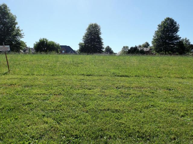 Lot 17 Rollling Hills 10th Addition Drive, Fremont Hills, MO 65714 (MLS #60115182) :: Good Life Realty of Missouri