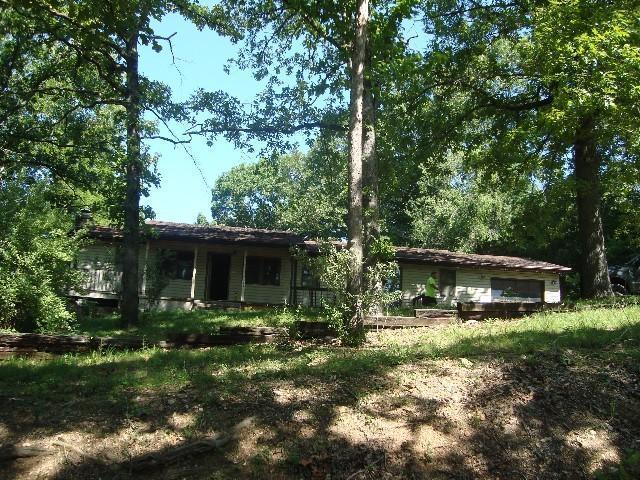 773 Blunk Road, Galena, MO 65656 (MLS #60116066) :: Team Real Estate - Springfield
