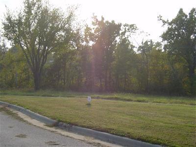 Lot 8 Fox Haven, Mt Vernon, MO 65712 (MLS #60116459) :: Team Real Estate - Springfield