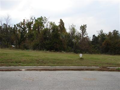 Lot 9 Fox Haven, Mt Vernon, MO 65712 (MLS #60116461) :: Team Real Estate - Springfield