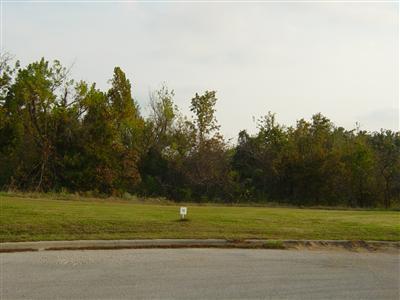 Lot 10 Fox Haven, Mt Vernon, MO 65712 (MLS #60116464) :: Team Real Estate - Springfield