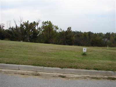 Lot 11 Fox Haven, Mt Vernon, MO 65712 (MLS #60116465) :: Team Real Estate - Springfield