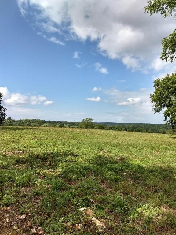 0 Highway M, Grovespring, MO 65662 (MLS #60117260) :: Sue Carter Real Estate Group