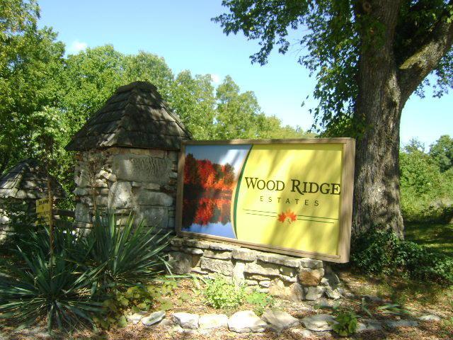 Lot 4 Woodridge Drive, Blue Eye, MO 65611 (MLS #60118389) :: Good Life Realty of Missouri
