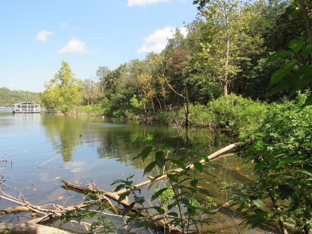Tbd Woodland Shores - Photo 1