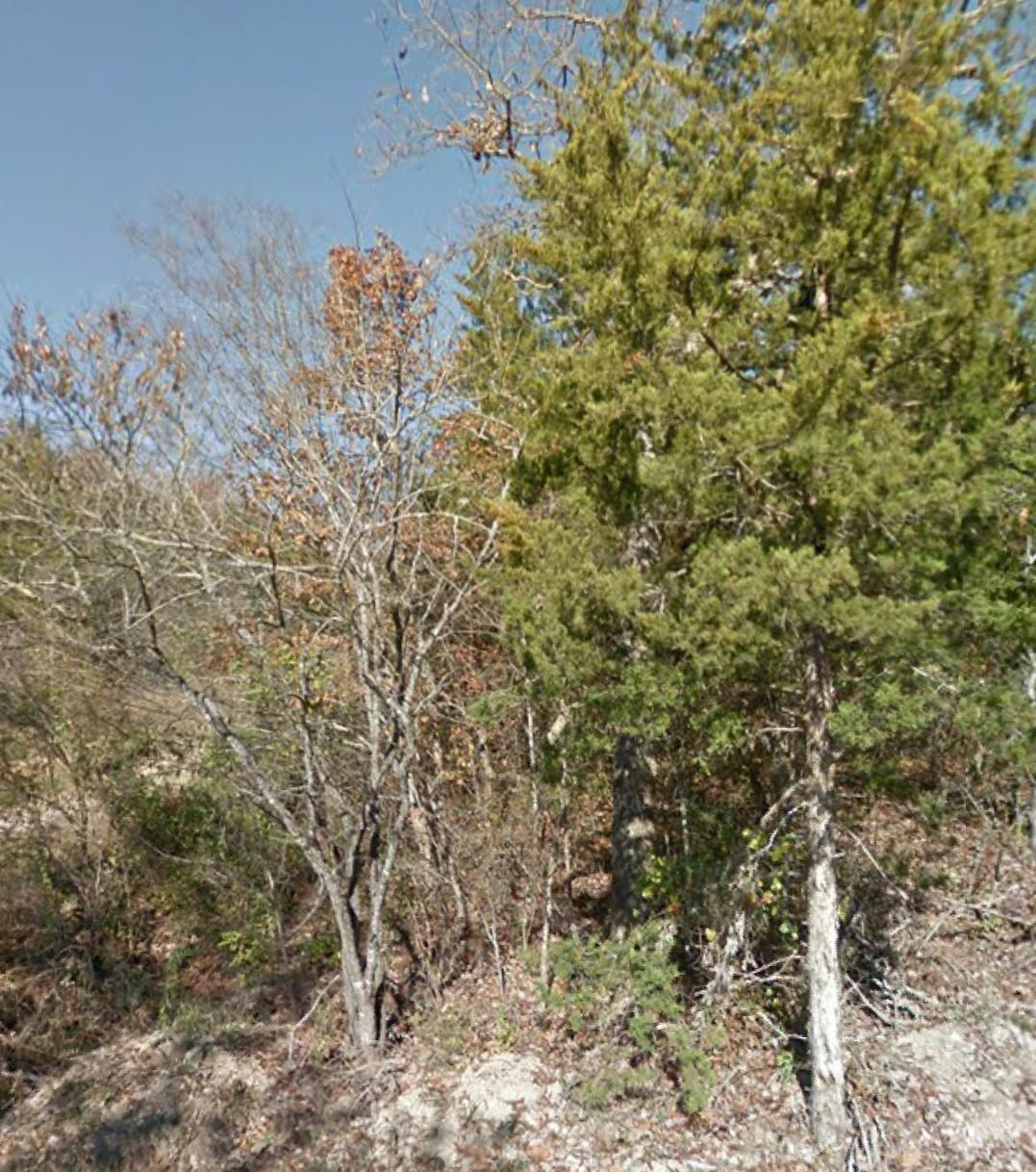 Lot 49 Pickett Ridge - Photo 1