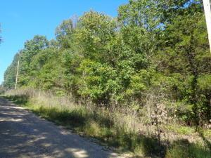 Lot27blk25 Deerfield Rd, Merriam Woods, MO 65740 (MLS #60120756) :: Good Life Realty of Missouri