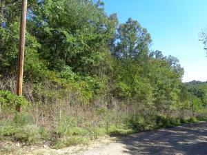Lot26blk25 Deerfield Rd, Merriam Woods, MO 65740 (MLS #60120759) :: Team Real Estate - Springfield