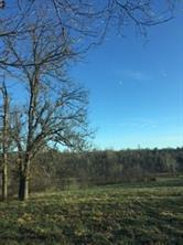 0 Farm Road 1005, Rocky Comfort, MO 64861 (MLS #60121413) :: Sue Carter Real Estate Group