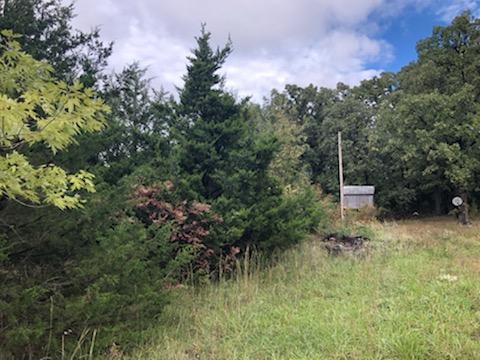 1105/1121 W Longhorn Road, Fair Grove, MO 65648 (MLS #60121490) :: Team Real Estate - Springfield
