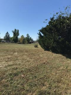 181 N Orchard Boulevard, Fair Grove, MO 65648 (MLS #60122569) :: Team Real Estate - Springfield