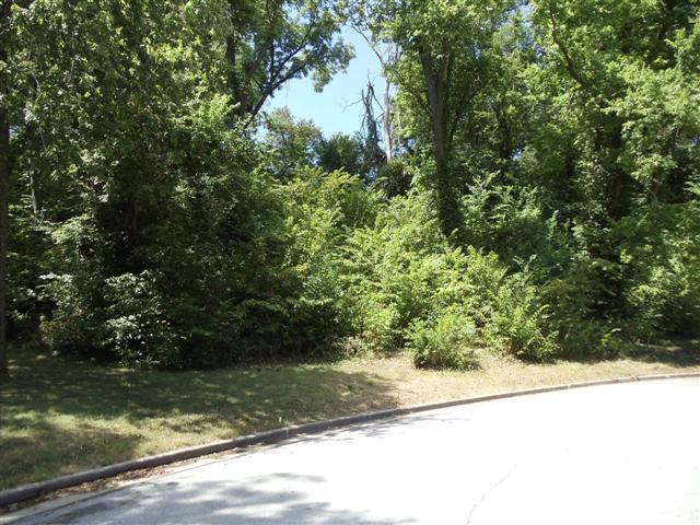 14 & 15 Rudondo Drive, Webb City, MO 64870 (MLS #60123613) :: Good Life Realty of Missouri