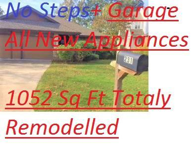 231 Buckingham Drive, Branson, MO 65616 (MLS #60124061) :: Good Life Realty of Missouri