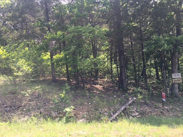 149 Appaloosa Trail, Saddlebrooke, MO 65630 (MLS #60125095) :: Team Real Estate - Springfield