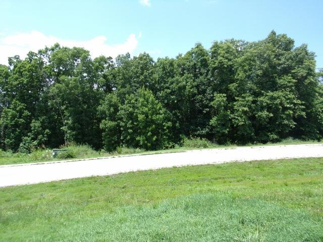 * Emerald Pointe Phase 8 Lot 264, Hollister, MO 65672 (MLS #60128650) :: Team Real Estate - Springfield