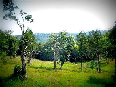 125 Ranch Road, Saddlebrooke, MO 65630 (MLS #60128810) :: Weichert, REALTORS - Good Life