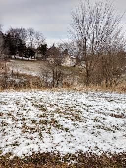 1203 E Jay Street, Ozark, MO 65721 (MLS #60129254) :: Team Real Estate - Springfield
