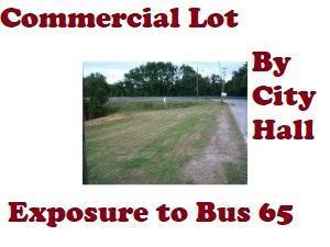 110 Esplanade Drive, Hollister, MO 65672 (MLS #60131416) :: Sue Carter Real Estate Group