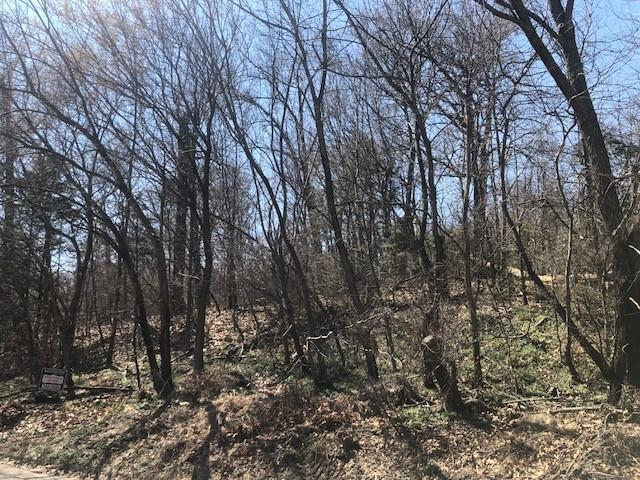 Lot 15 Belmont Drive, Joplin, MO 64804 (MLS #60131947) :: Weichert, REALTORS - Good Life