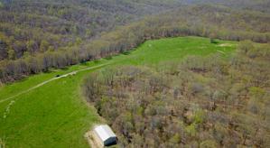 0 State Hwy D D Highway, Bruner, MO 65620 (MLS #60134573) :: Team Real Estate - Springfield