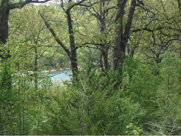Lot 1 Treasure Hunt Trail, Blue Eye, MO 65611 (MLS #60135115) :: Sue Carter Real Estate Group